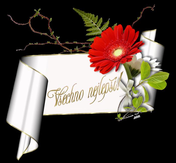 blahopřání k narozeninám Blahopřání k narozeninám | NEPOMUK – poutní město, rodiště sv  blahopřání k narozeninám