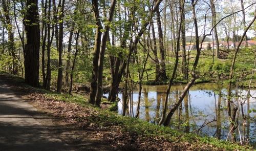 Řeka Úslava