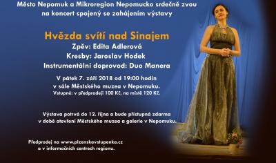 Koncert Edity Adlerové