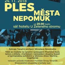 2018_11_ples_mesta_Nepomuk