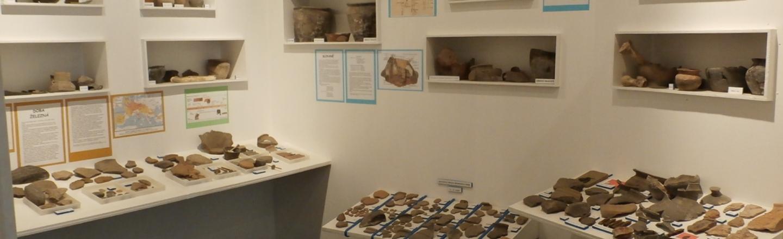 Žinkovy Regional History Collection