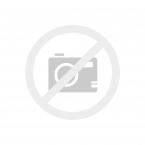 Bc. Šárka Boušová