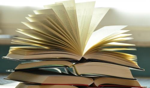 ilustrační foto Knihovna